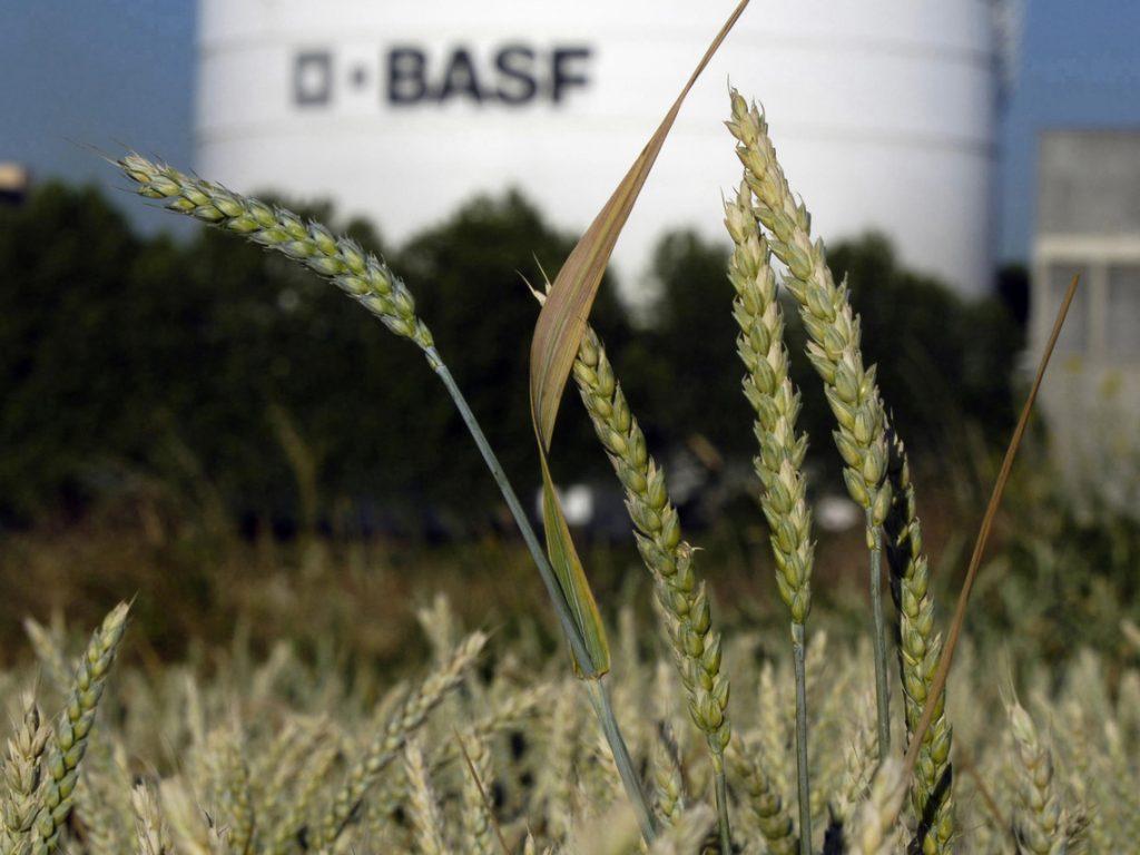 BASF Aktie - Getreide vor Silo